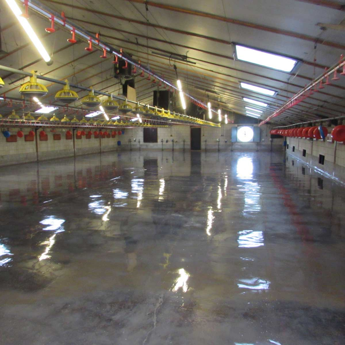 coatings for poultry farms