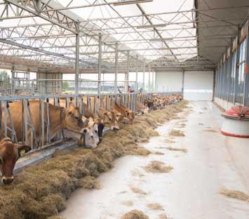 Beschichtungen für den Agrarsektor