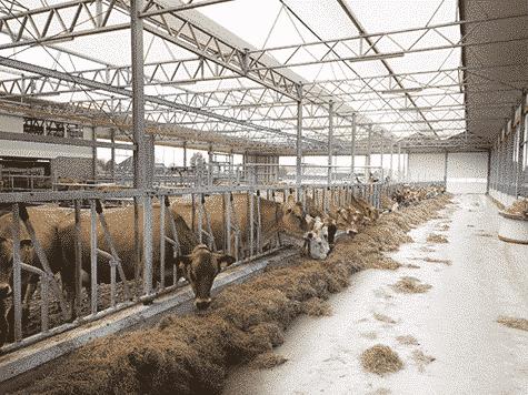 feed corridor